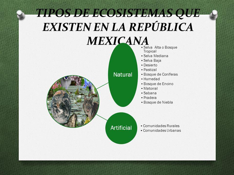 TIPOS DE ECOSISTEMAS QUE EXISTEN EN LA REPÚBLICA MEXICANA