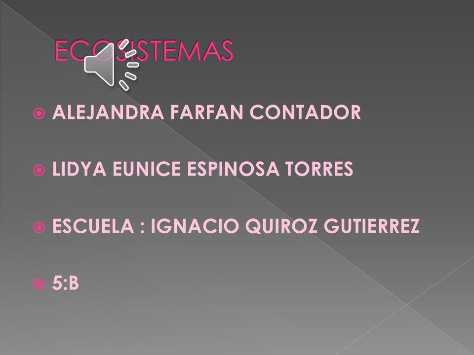 ECOSISTEMAS ALEJANDRA FARFAN CONTADOR LIDYA EUNICE ESPINOSA TORRES