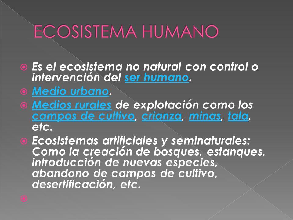 ECOSISTEMA HUMANO Es el ecosistema no natural con control o intervención del ser humano. Medio urbano.