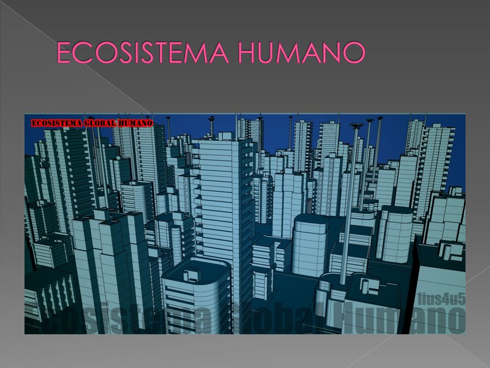 ECOSISTEMA HUMANO