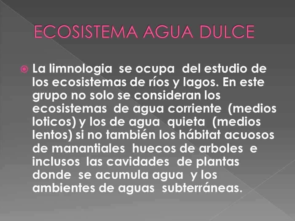 ECOSISTEMA AGUA DULCE