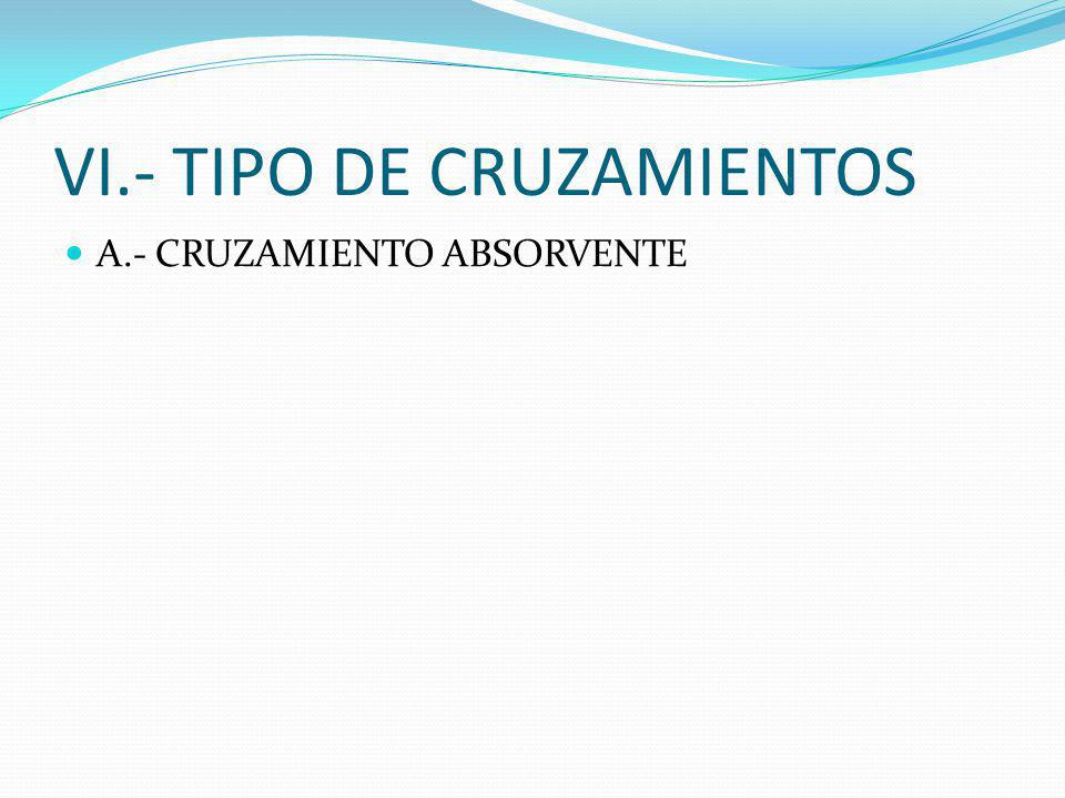VI.- TIPO DE CRUZAMIENTOS