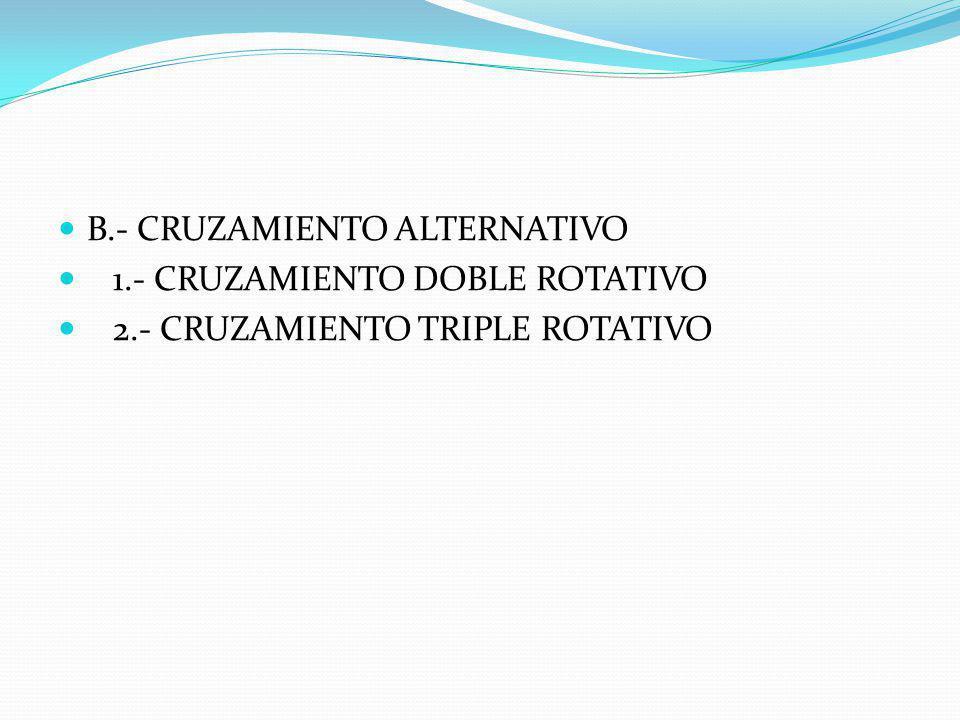 B.- CRUZAMIENTO ALTERNATIVO
