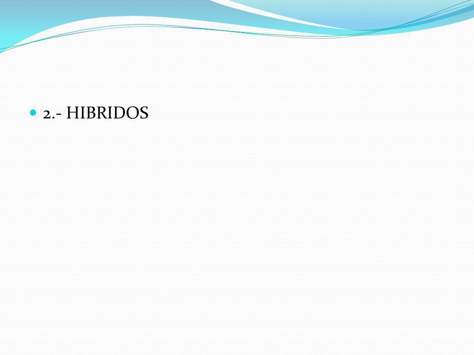 2.- HIBRIDOS
