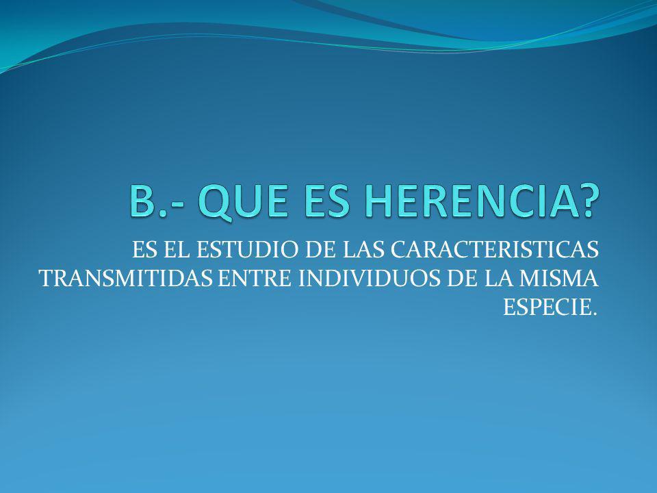 B.- QUE ES HERENCIA.