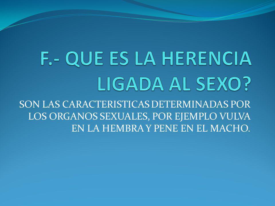 F.- QUE ES LA HERENCIA LIGADA AL SEXO