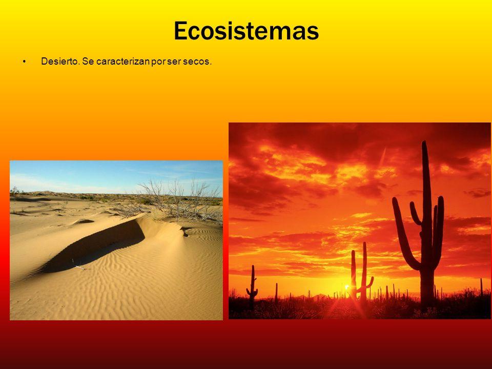 Ecosistemas Desierto. Se caracterizan por ser secos.