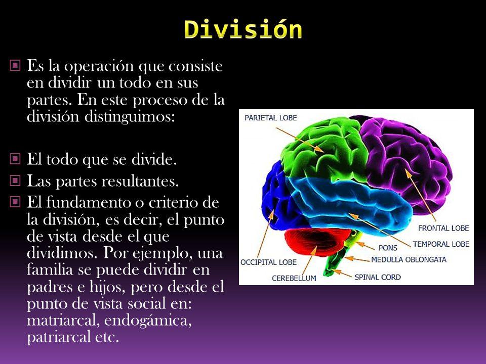 División Es la operación que consiste en dividir un todo en sus partes. En este proceso de la división distinguimos: