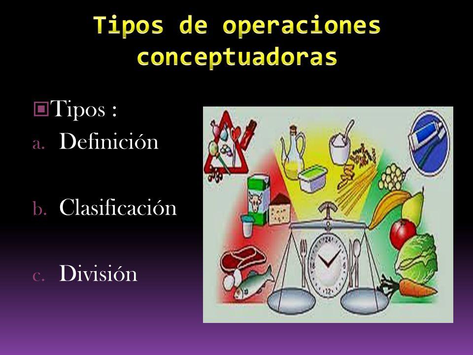 Tipos de operaciones conceptuadoras
