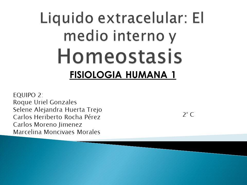 Liquido extracelular: El medio interno y Homeostasis