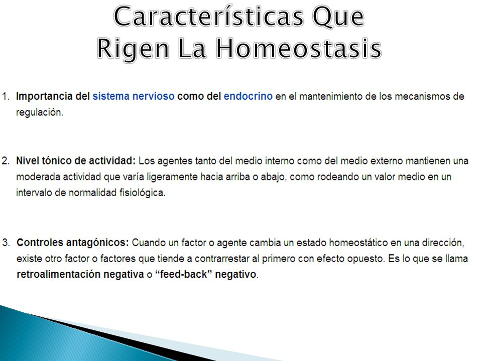 Características Que Rigen La Homeostasis