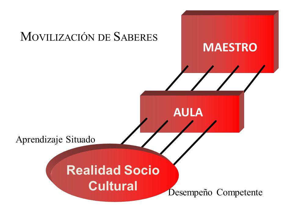 MOVILIZACIÓN DE SABERES
