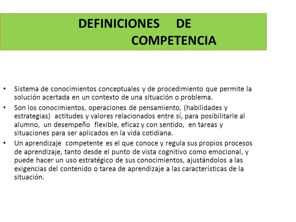 DEFINICIONES DE COMPETENCIA