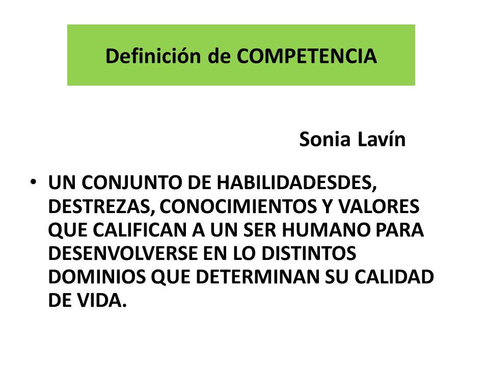 Definición de COMPETENCIA Sonia Lavín