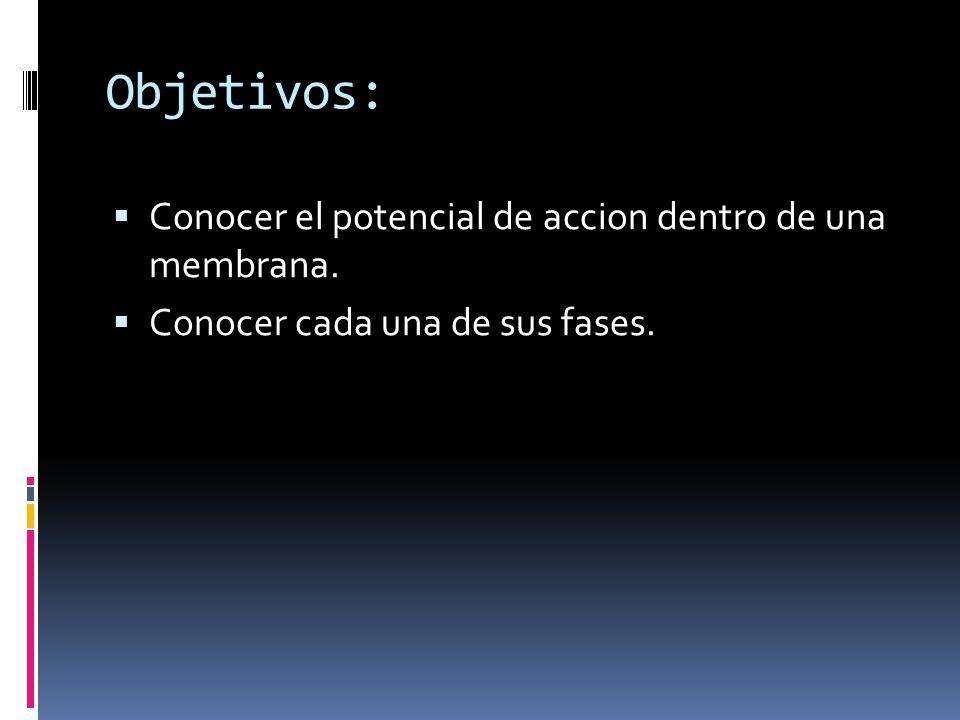 Objetivos: Conocer el potencial de accion dentro de una membrana.