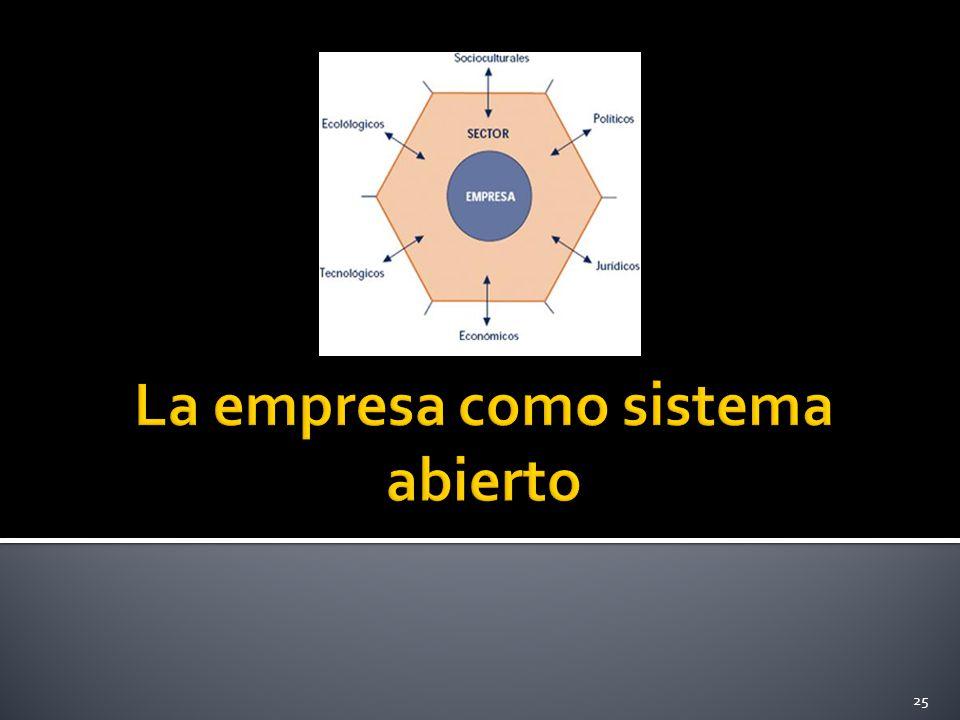 La empresa como sistema abierto