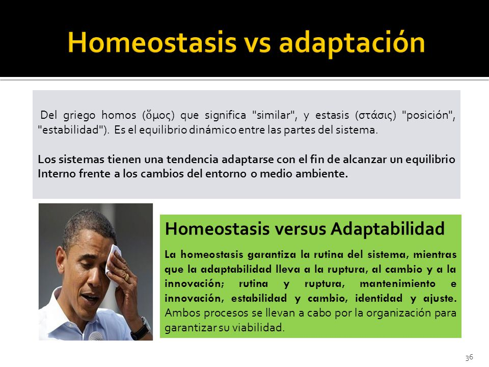 Homeostasis vs adaptación
