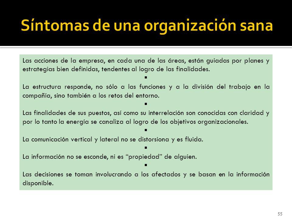 Síntomas de una organización sana