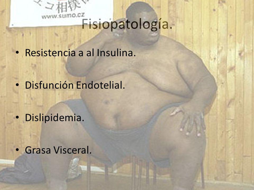 Fisiopatología. Resistencia a al Insulina. Disfunción Endotelial.