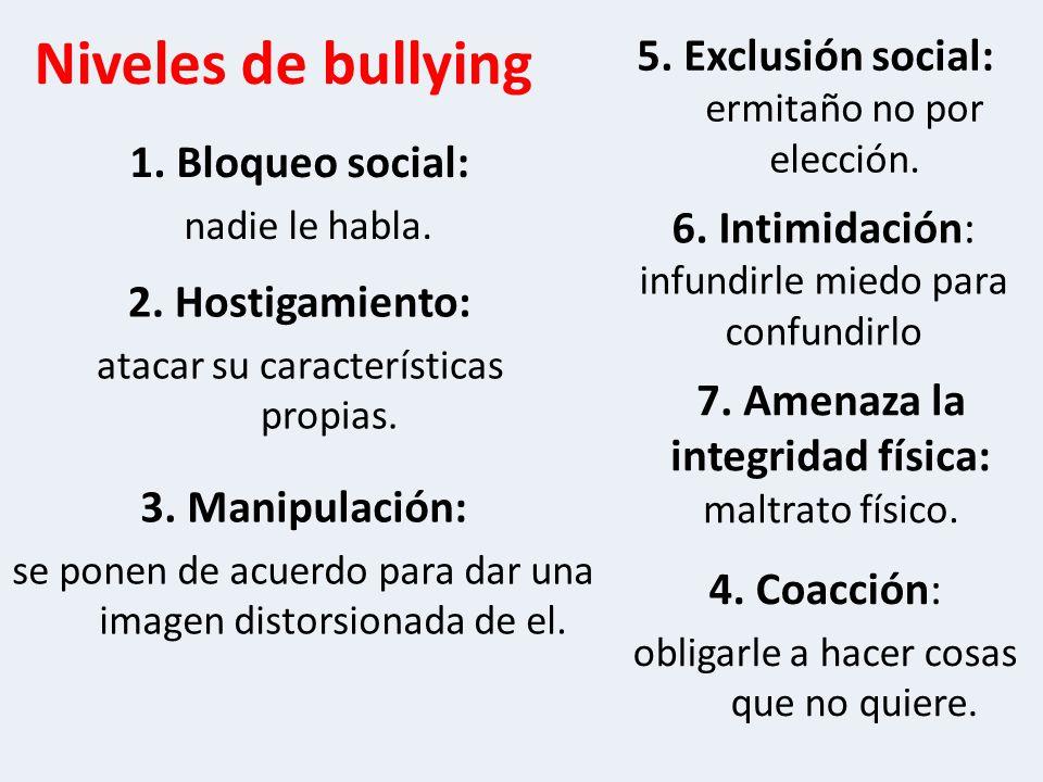 Niveles de bullying 5. Exclusión social: ermitaño no por elección.