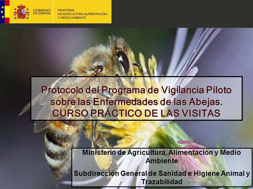 Protocolo del Programa de Vigilancia Piloto sobre las Enfermedades de las Abejas. CURSO PRÁCTICO DE LAS VISITAS