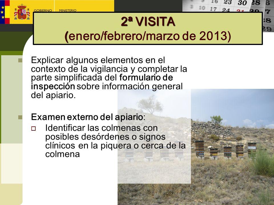 2ª VISITA (enero/febrero/marzo de 2013)