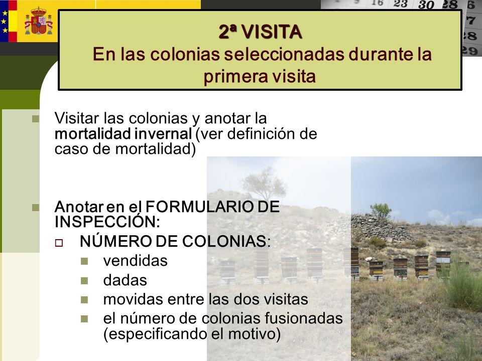 2ª VISITA En las colonias seleccionadas durante la primera visita