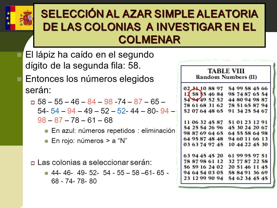 SELECCIÓN AL AZAR SIMPLE ALEATORIA DE LAS COLONIAS A INVESTIGAR EN EL COLMENAR