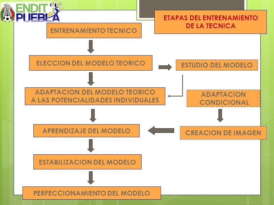 ETAPAS DEL ENTRENAMIENTO DE LA TECNICA ENTRENAMIENTO TECNICO
