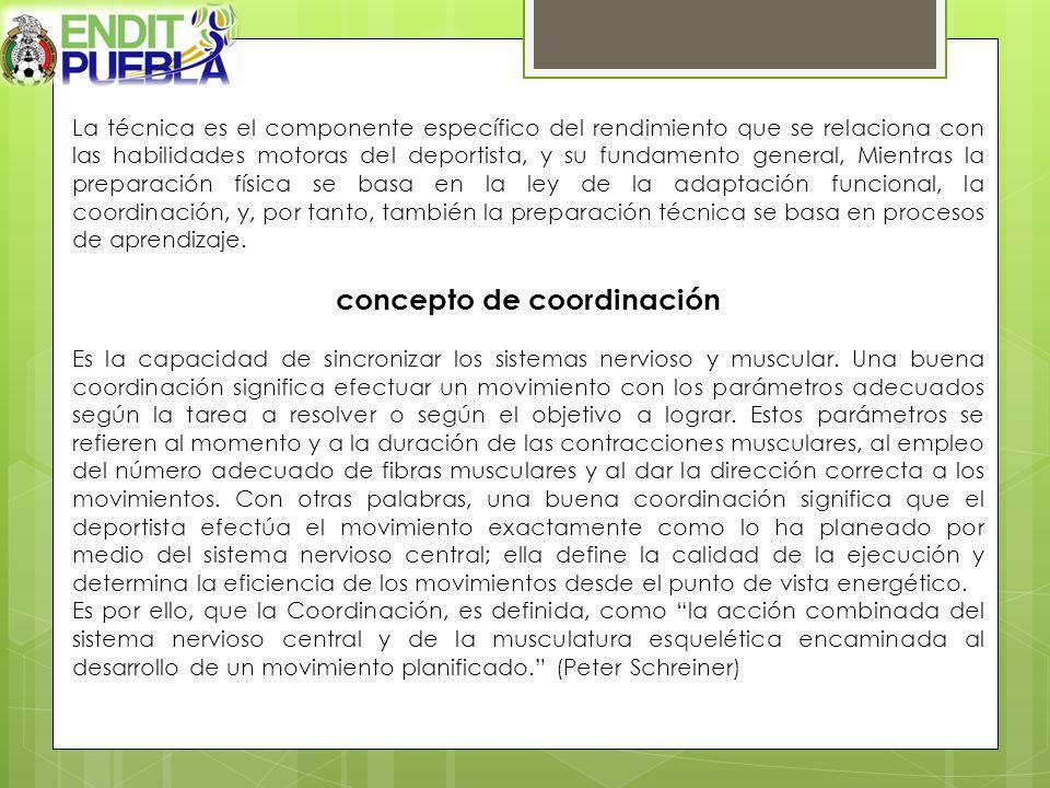 concepto de coordinación