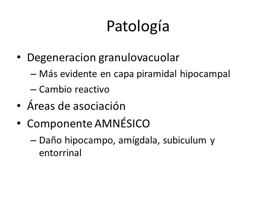 Patología Degeneracion granulovacuolar Áreas de asociación