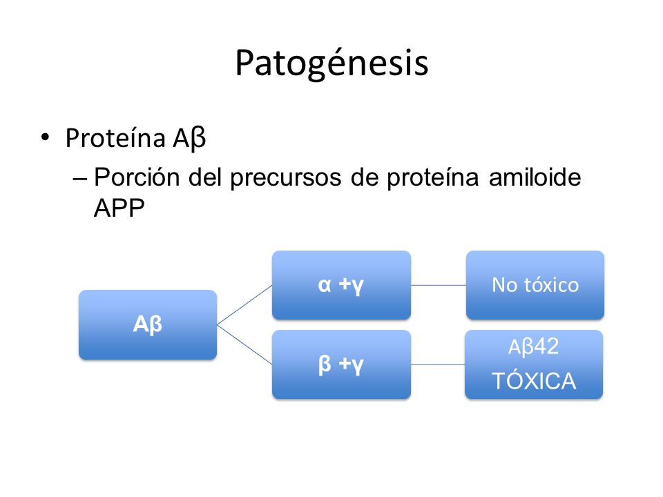 Patogénesis Proteína Aβ Porción del precursos de proteína amiloide APP