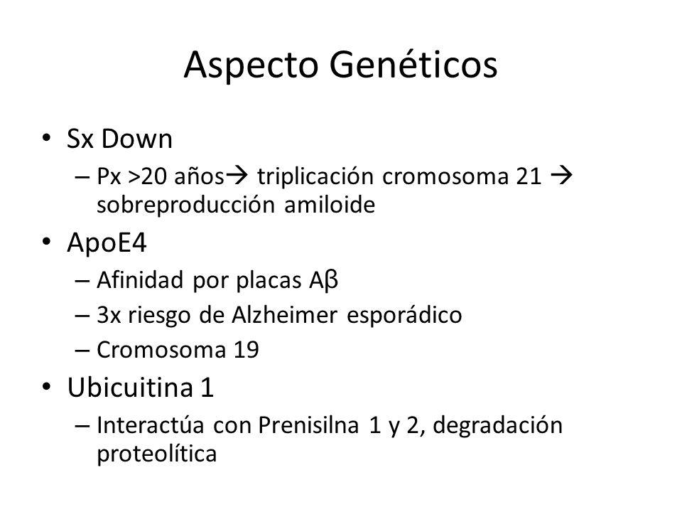 Aspecto Genéticos Sx Down ApoE4 Ubicuitina 1