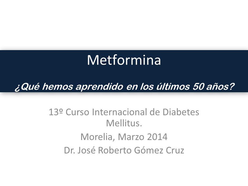 Metformina 13º Curso Internacional de Diabetes Mellitus.