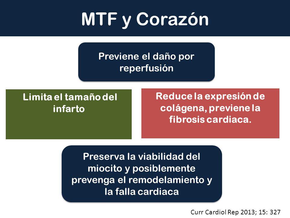 MTF y Corazón Previene el daño por reperfusión