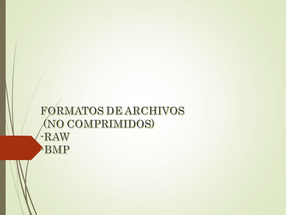 FORMATOS DE ARCHIVOS (NO COMPRIMIDOS) -RAW -BMP