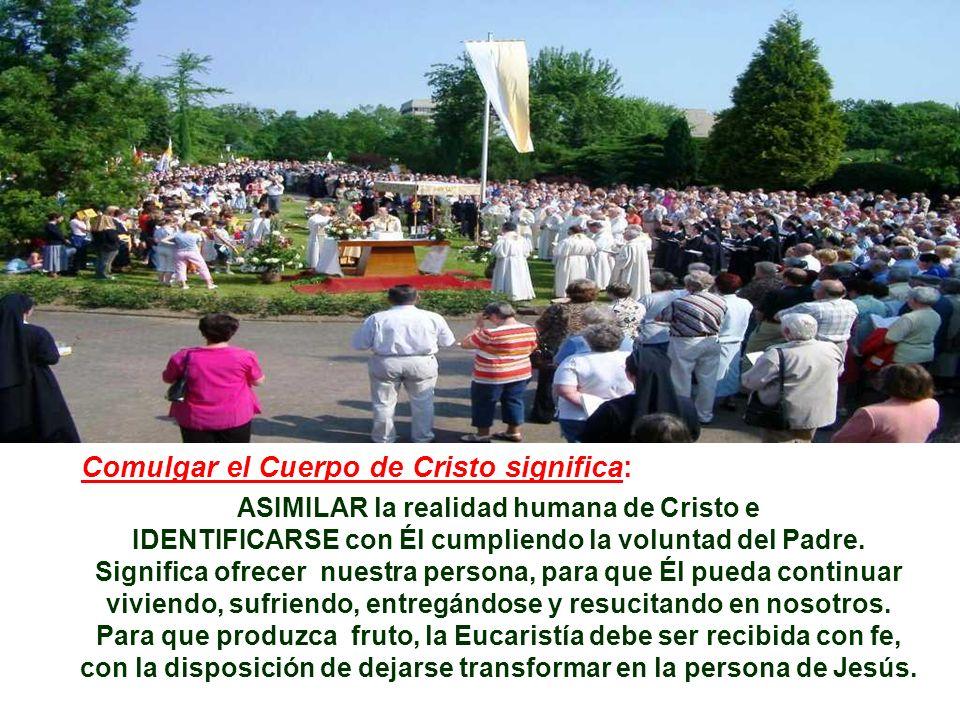ASIMILAR la realidad humana de Cristo e