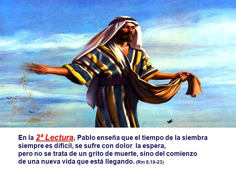 En la 2ª Lectura, Pablo enseña que el tiempo de la siembra