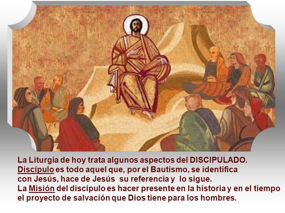 La Liturgia de hoy trata algunos aspectos del DISCIPULADO.