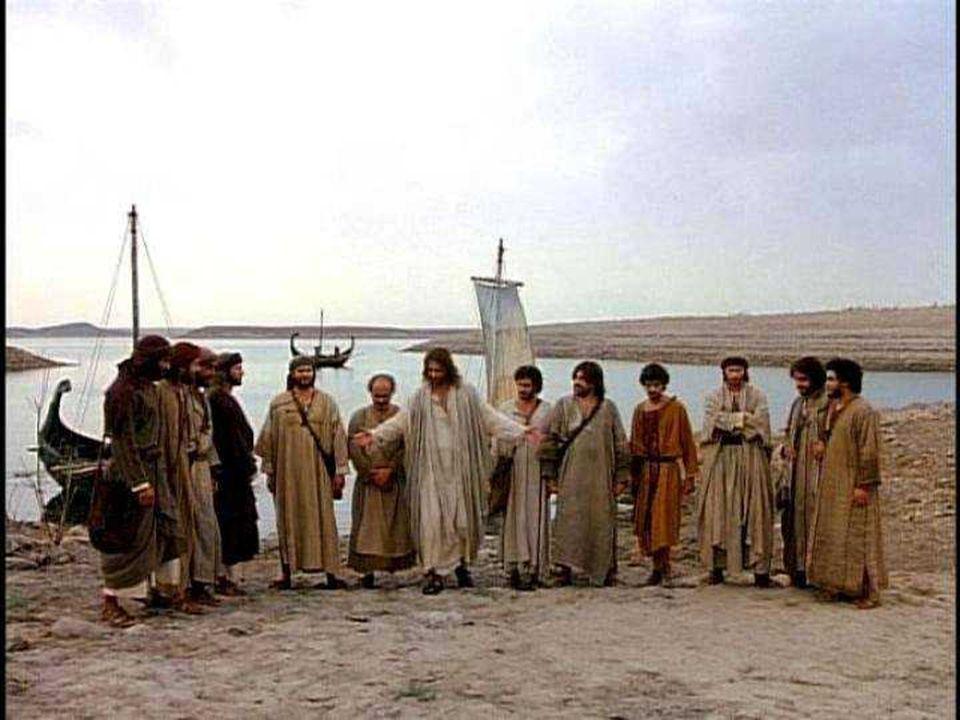 El Evangelio es una catequesis sobre el DISCIPULADO. (Mt 10,37-42)