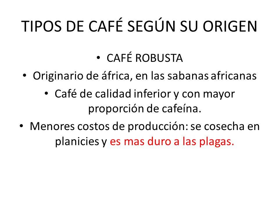 TIPOS DE CAFÉ SEGÚN SU ORIGEN