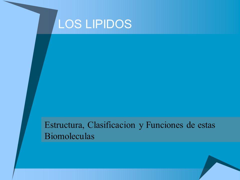 Estructura, Clasificacion y Funciones de estas Biomoleculas