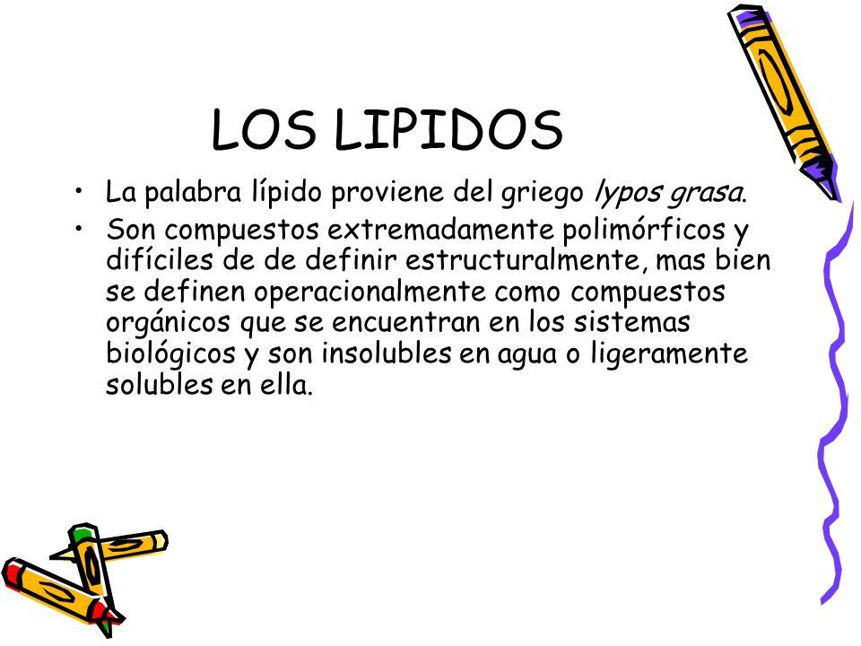 LOS LIPIDOS La palabra lípido proviene del griego lypos grasa.
