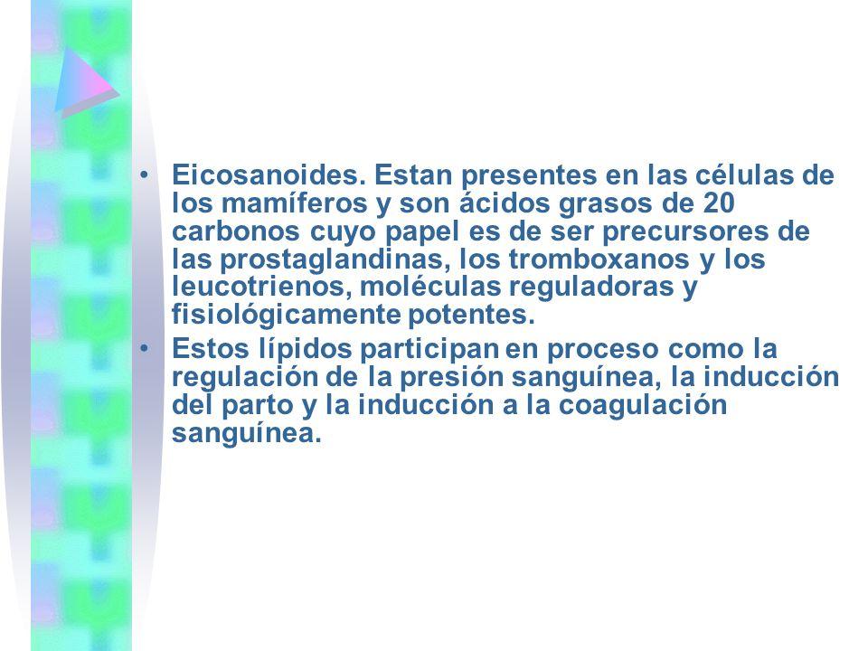 Eicosanoides. Estan presentes en las células de los mamíferos y son ácidos grasos de 20 carbonos cuyo papel es de ser precursores de las prostaglandinas, los tromboxanos y los leucotrienos, moléculas reguladoras y fisiológicamente potentes.