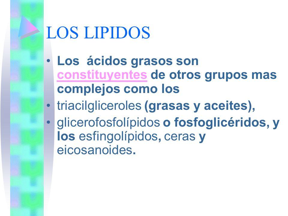 LOS LIPIDOS Los ácidos grasos son constituyentes de otros grupos mas complejos como los. triacilgliceroles (grasas y aceites),