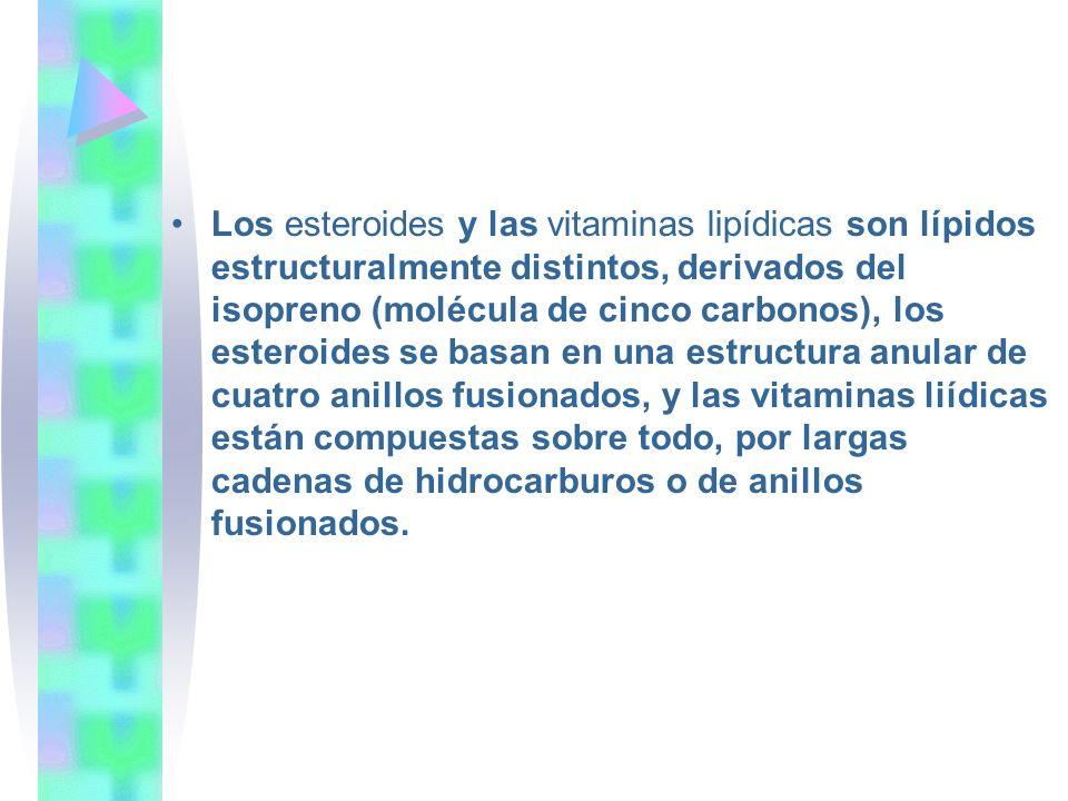 Los esteroides y las vitaminas lipídicas son lípidos estructuralmente distintos, derivados del isopreno (molécula de cinco carbonos), los esteroides se basan en una estructura anular de cuatro anillos fusionados, y las vitaminas liídicas están compuestas sobre todo, por largas cadenas de hidrocarburos o de anillos fusionados.
