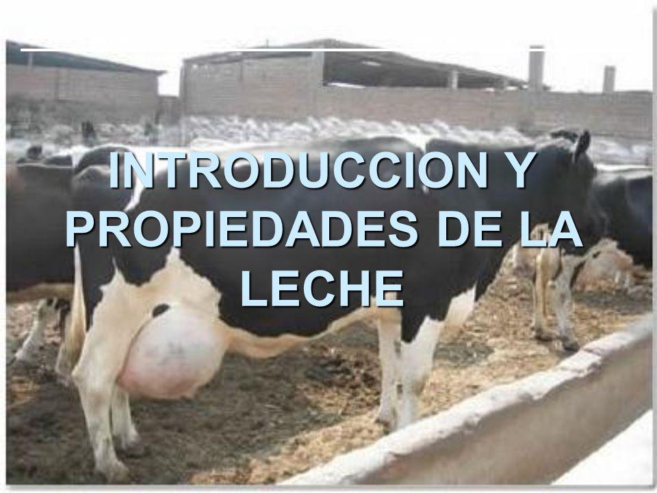 INTRODUCCION Y PROPIEDADES DE LA LECHE