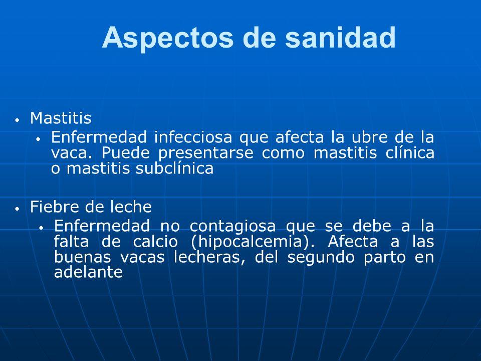 Aspectos de sanidad Mastitis