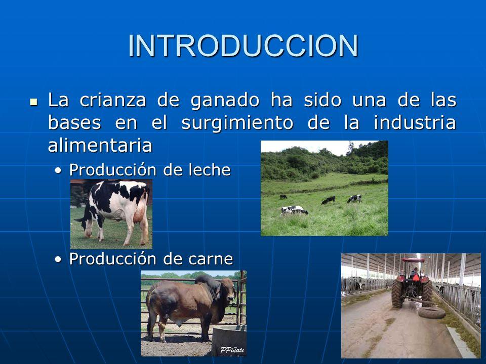 INTRODUCCION La crianza de ganado ha sido una de las bases en el surgimiento de la industria alimentaria.