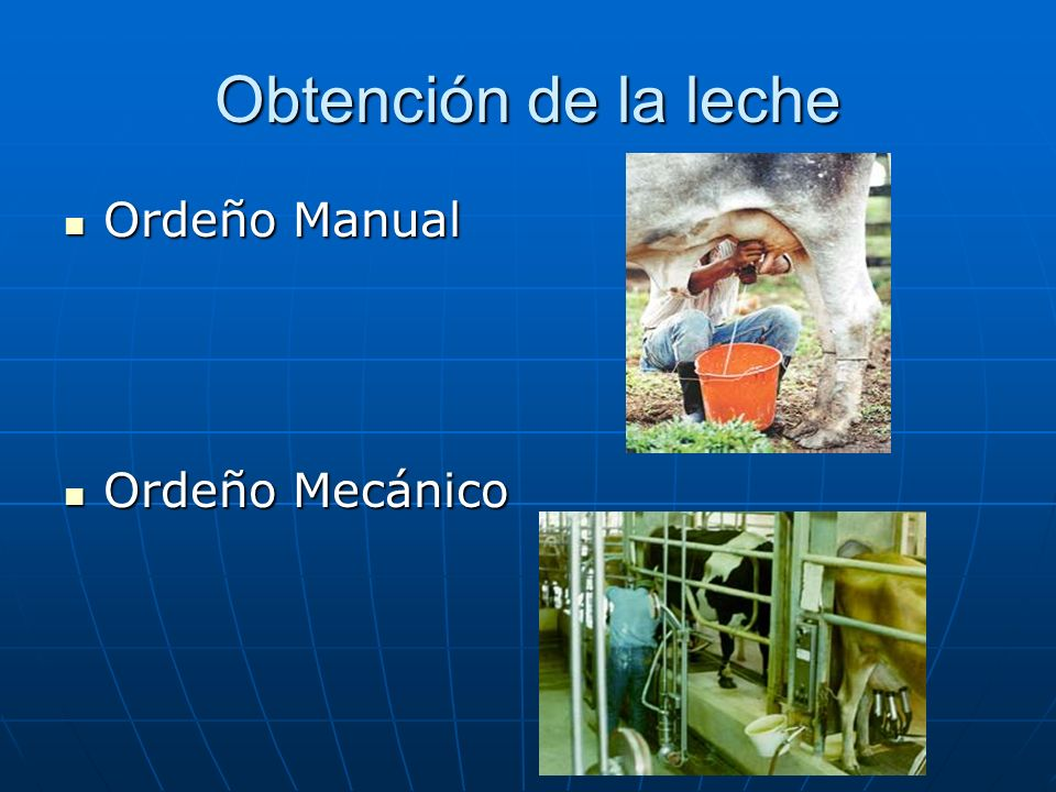 Obtención de la leche Ordeño Manual Ordeño Mecánico